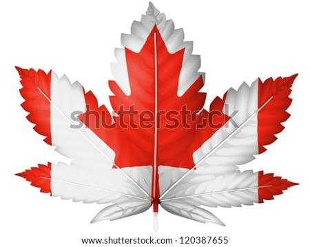 The Canadian flag painted on  cannabis or marijuana leaf