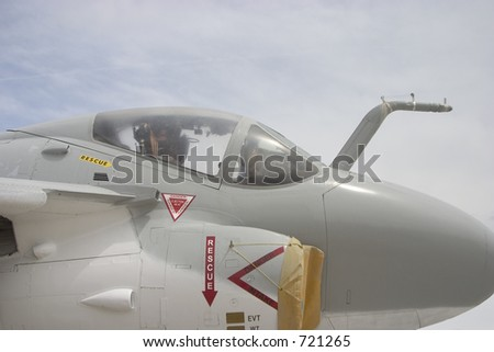 The canopy of an Navy jet.