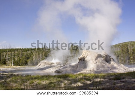 The Castle geyser in Yellowstone