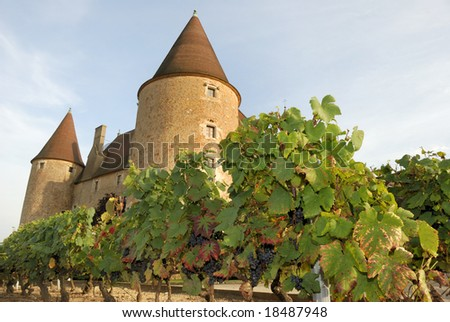 The castle of Corcelles and its vineyard in the South of France