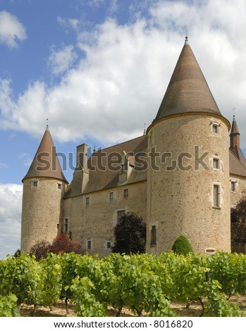The castle of Corcelles in France and its vineyard.