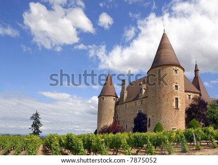 The castle of Corcelles in France with its vineyard
