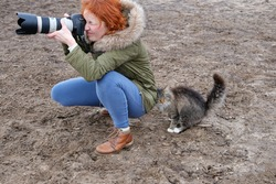 The cat bothers the photographer girl during work
