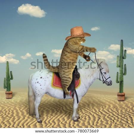 the cat cowboy riding a horse...