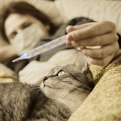 The cat is lying at the feet of a woman with coronavirus. The girl looks at the thermometer lying in bed