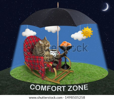 The cat with a cup of coffee sits in the rocking chair near a bowl with sushi under a black umbrella in the sunshine on a green meadow at night. Comfort zone.