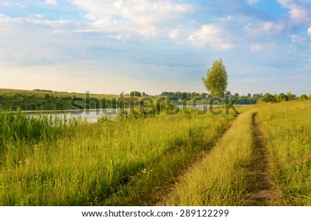 The charming landscape with alone tree and road middle of the field near the river at dawn in pastel colors (harmony, rest, relaxation, anti-stress, meditation - concept)