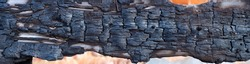 The charred texture of burnt wood, burnt wood texture. Panoramic view. Long banner