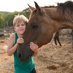 The child hugs the horse with tenderness. Love and friendship with your pet. A girl or boy hugged the bay horse tightly by the head. Warm summer picture