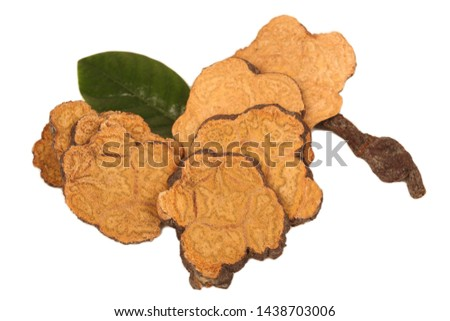 The Chinese medicine Polygonum multiflorum on white background