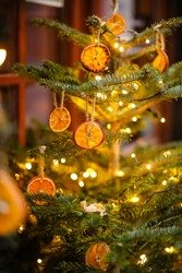The Christmas tree is decorated with dried oranges outside in winter in December.Green branches on a blurry background and yellow gold bokeh. Holiday decor in eco style.Merry Christmas.Happy New Year