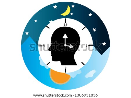 The circadian rhythms are controlled by circadian clocks or biological clock these clocks tell our brain when to sleep, tell our gut when to digest and control our activity in several day.  Foto stock ©