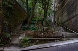 The city made of concrete meets the jungle. This is where Hong Kong city centre transitions into the Victoria Peak.