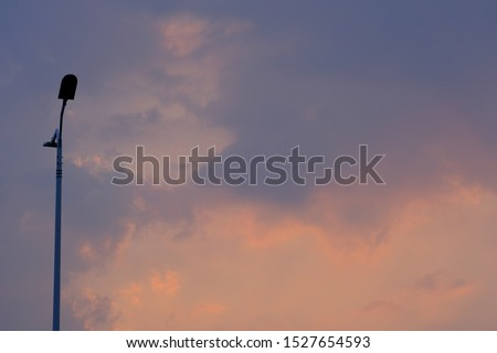 The city's street lights form an abstract and beautiful silhouette in the sunset sky at sunset. At nightfall, modern street lights will automatically illuminate to provide illumination.