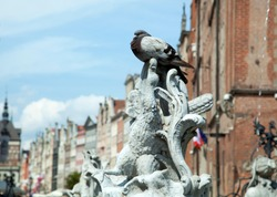 The close view of 17th century Neptune fountain details with a pigeon (Gdansk, Poland).