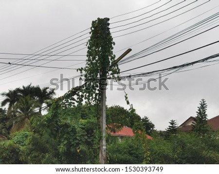 The clutter of electrical wires and electrical poles