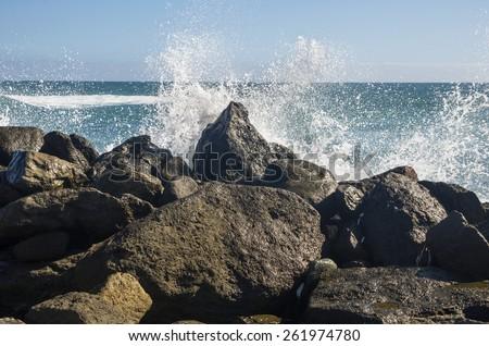 The coast of Atlantic ocean, Gran Canaria, Canary islands, Spain #261974780