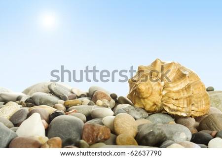 The coastline of beaches, sea stones, shells, sky and sun