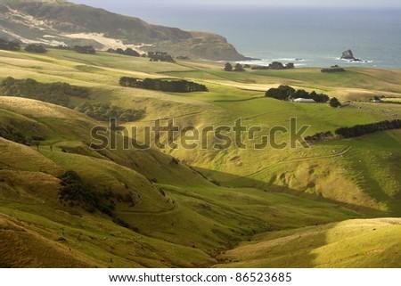 The coastline on the Otago peninsula on the South island of New Zealand