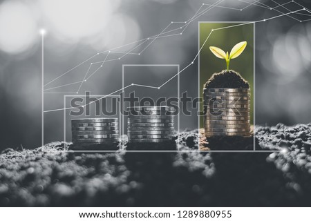 The coins are arranged in rows of three rows and graphs show continuous financial growth.