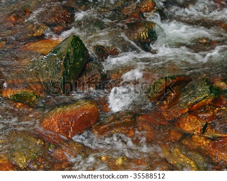 The cold Mountain Stream in the Virgin Nature