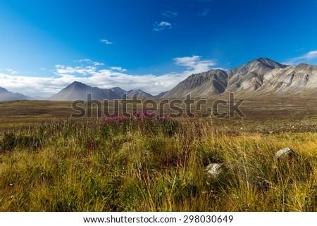 The Colorful autumn Chukotka tundra, Arctic Circle Russia