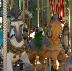 The colorful horses on the merry-go-round