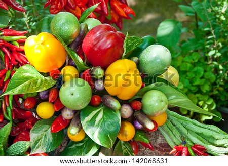 The Colorful of chili with vegetables