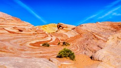 The colorful red, yellow and white banded rock formations of the Fire Wave Rock on the Fire Wave Trail in the Valley of Fire State Park in Nevada, USA