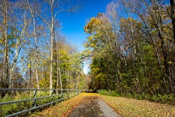 The colors of autumn along a trailway in Putnam County, New York.