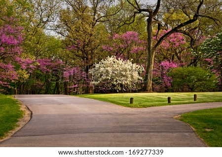 The colors of spring create a scenic drive through the grounds of The Morton Arboretum in Lisle, Illinois.