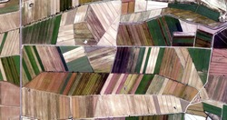 the colors of work, tribute to Picasso, abstract photography of the Spain fields from the air, aerial view, representation of human labor camps, abstract art,