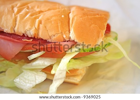 The commonly popular subway sandwich for a quick bite.