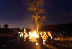The company of young people are sitting around the bonfire and singing songs