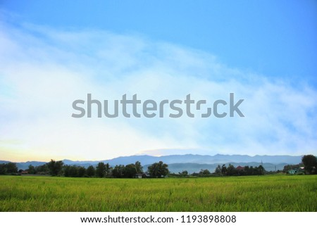 The complex is very beautiful. The blue sky is bright blue. The front is a vast rice field with a farmer's house hiding in the bush. #1193898808