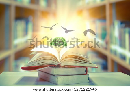 The concept of education by planting a tree of knowledge And birds that fly into the future In the opening of the old book in the library that contains the stack of textbooks that store the text and s #1291221946