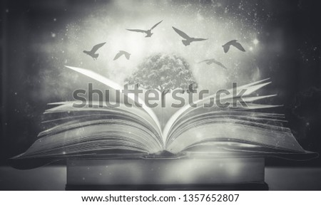 The concept of education by planting a tree of knowledge And birds that fly into the future In the opening of the old book in the library that contains the stack of textbooks that store the text