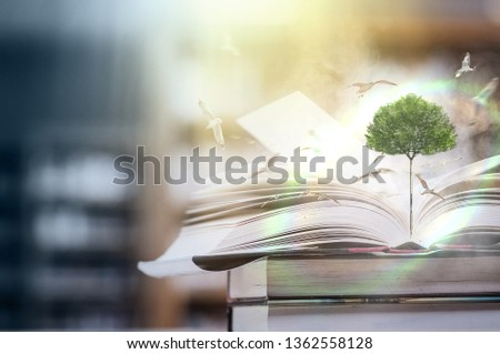 The concept of education by planting a tree of knowledge And birds that fly into the future In the opening of the old book in the library that contains the stack of textbooks that store the text and s #1362558128