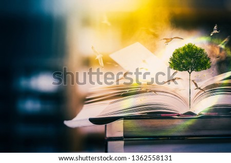 The concept of education by planting a tree of knowledge And birds that fly into the future In the opening of the old book in the library that contains the stack of textbooks that store the text and s #1362558131