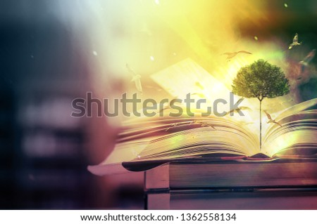 The concept of education by planting a tree of knowledge And birds that fly into the future In the opening of the old book in the library that contains the stack of textbooks that store the text and s #1362558134