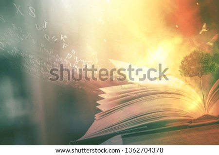 The concept of education by planting a tree of knowledge And birds that fly into the future In the opening of the old book in the library that contains the stack of textbooks that store the text and s #1362704378