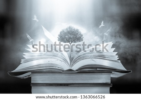 The concept of education by planting a tree of knowledge And birds that fly into the future In the opening of the old book in the library that contains the stack of textbooks that store the text and s #1363066526