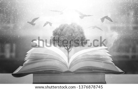 The concept of education by planting a tree of knowledge And birds that fly into the future In the opening of the old book in the library that contains the stack of textbooks that store the text  #1376878745