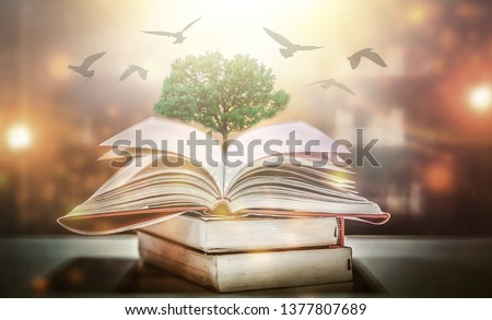 The concept of education by planting a tree of knowledge And birds that fly into the future In the opening of the old book in the library that contains the stack of textbooks that store the text and s #1377807689