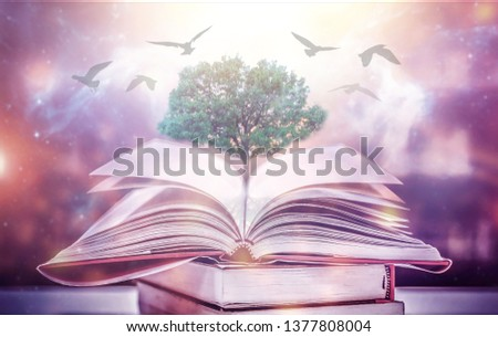 The concept of education by planting a tree of knowledge And birds that fly into the future In the opening of the old book in the library that contains the stack of textbooks that store the text and s #1377808004