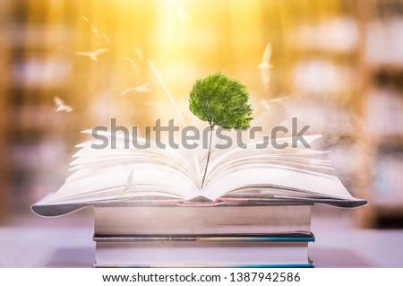 The concept of education by planting a tree of knowledge And birds that fly into the future In the opening of the old book in the library that contains the stack of textbooks that store the text and s