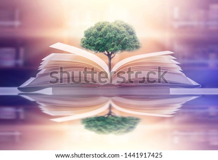 The concept of education by planting a tree of knowledge in the opening of an old book in the library and the magical magic of light that flies to the destination of success. Beautiful background #1441917425