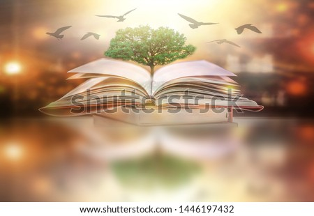 The concept of education by planting a tree of knowledge in the opening of an old book in the library and the magical magic of light that flies to the destination of success. Beautiful background #1446197432