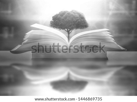 The concept of education by planting a tree of knowledge in the opening of an old book in the library and the magical magic of light that flies to the destination of success. Beautiful background #1446869735