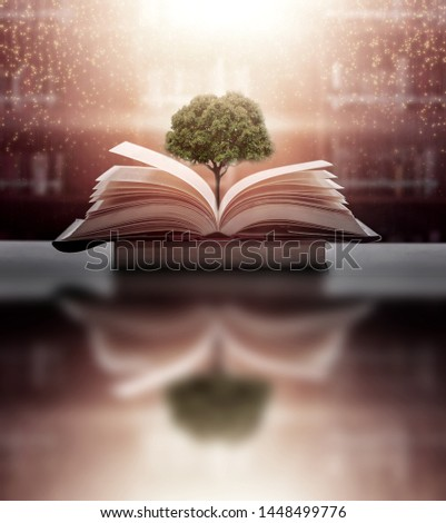 The concept of education by planting a tree of knowledge in the opening of an old book in the library and the magical magic of light that flies to the destination of success. Beautiful background #1448499776